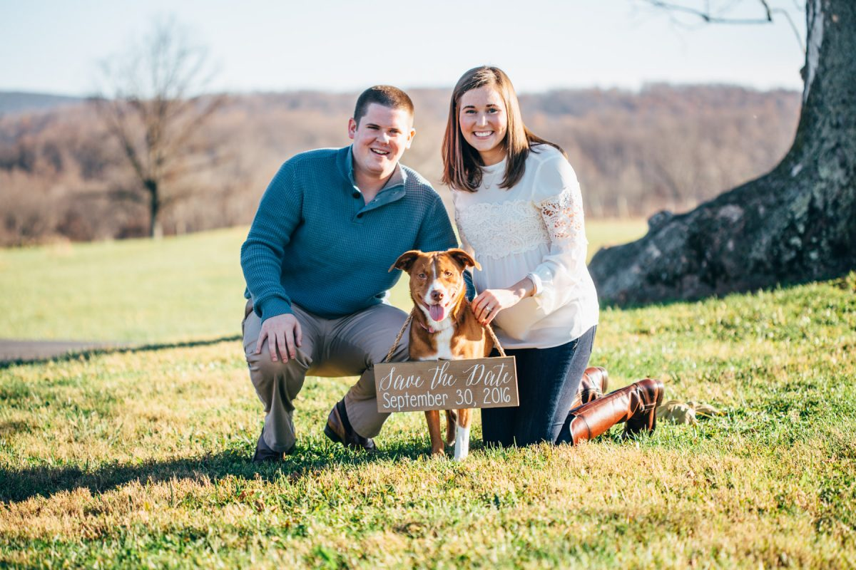Greenhill Winery and Vineyards Engagement, Middleburg Virginia Engagement