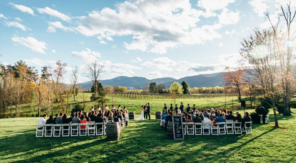 Charlottesville Wedding, Virginia Wedding Photographer, Charlottesville Wedding Photographer, Roanoke Wedding Photographer, DC Wedding Photographer, Veritas Winery Wedding