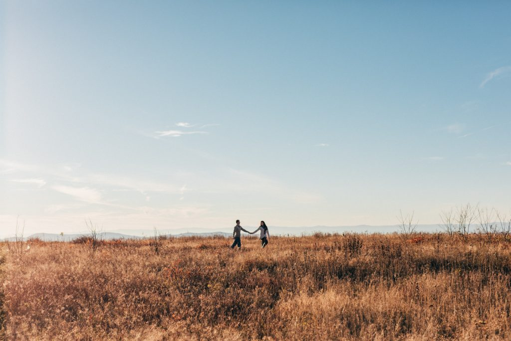 skyline drive engagement, big meadows engagement, virginia wedding photographer
