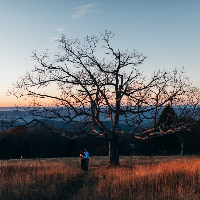 Big Meadows Engagement | Shenandoah National Park | Wynne + Lenny
