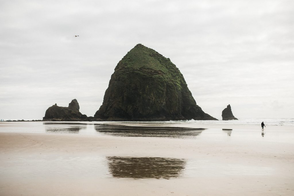 cannon beach wedding engagement
